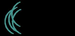 stimmkolleg_Logo_final